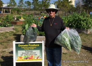 Lakes Park Community Garden donates produce to the Community Cooperative in Fort Myers