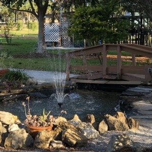 The fountain at the Lakes Park Fragrance Garden, up and running again. Photo: Kathy Busick