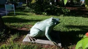Lakes Park frog