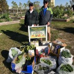 The Lakes Park Community Garden donates produce and other food items to the Community Cooperative, Fort Myers, FL