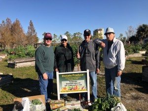 """""""A"""" team members bring their """"A"""" game for a cold morning's harvest - includes Bill Johnson, Dorothea McLaughlin, Jim Dubyak, Doc Johnson, Norm Smith & Jan Johnson"""