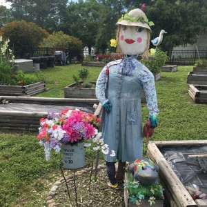 Our Community Garden scarecrow - always seen in seasonally-appropriate attire!