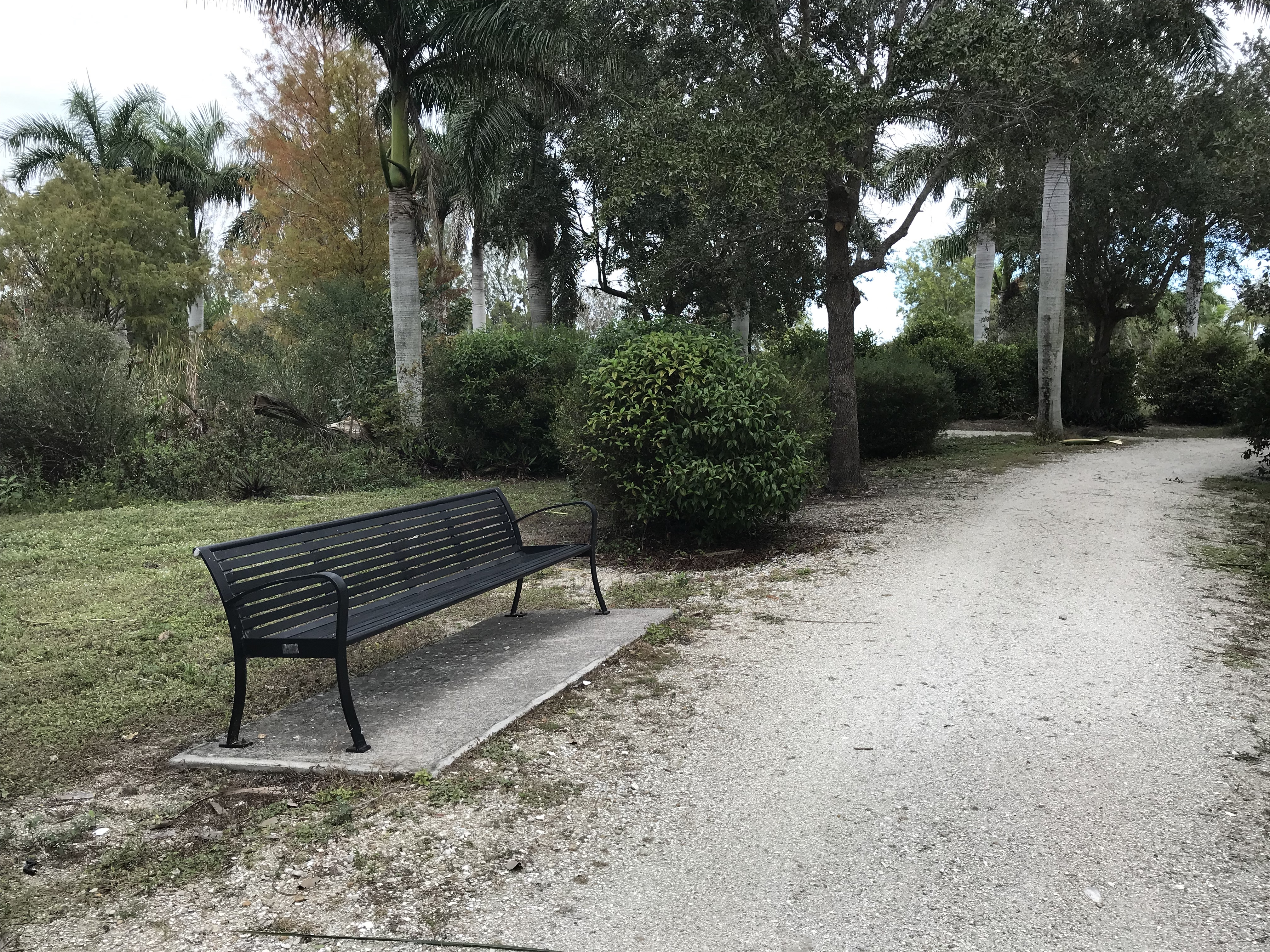 Bench awaiting replacement and dedication in Lakes Park, Fort Myers FL
