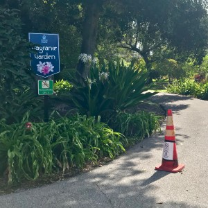 Pedestrian only signs in the garden