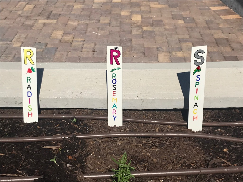 A closer look at Elvy's plant markers for the Children's Garden.