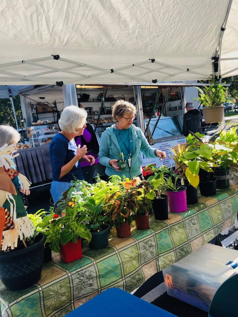 Master Gardener volunteer Paula Novander assists a shopper with plant selection.