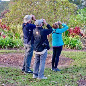 Birders in Lakes Park