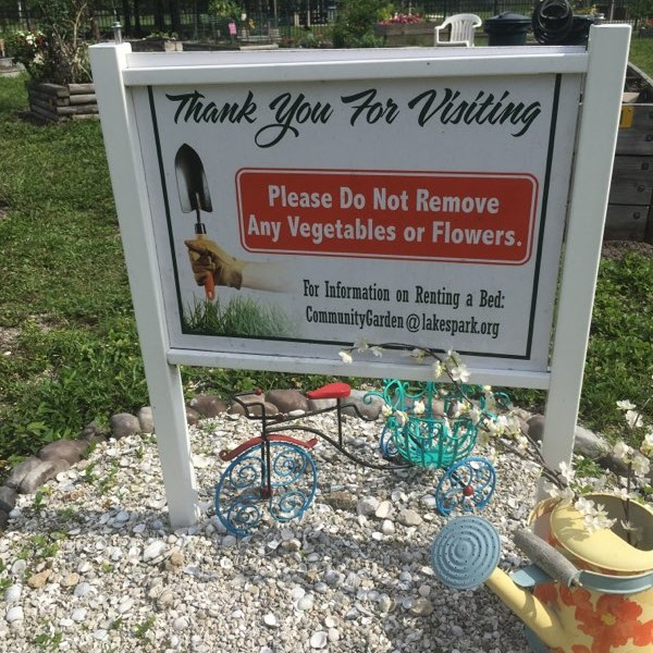 We donate excess produce to the Community Cooperative soup kitchen in Fort Myers