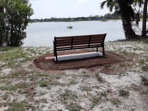 Bench dedicated by Nadine Maki - lakeside view